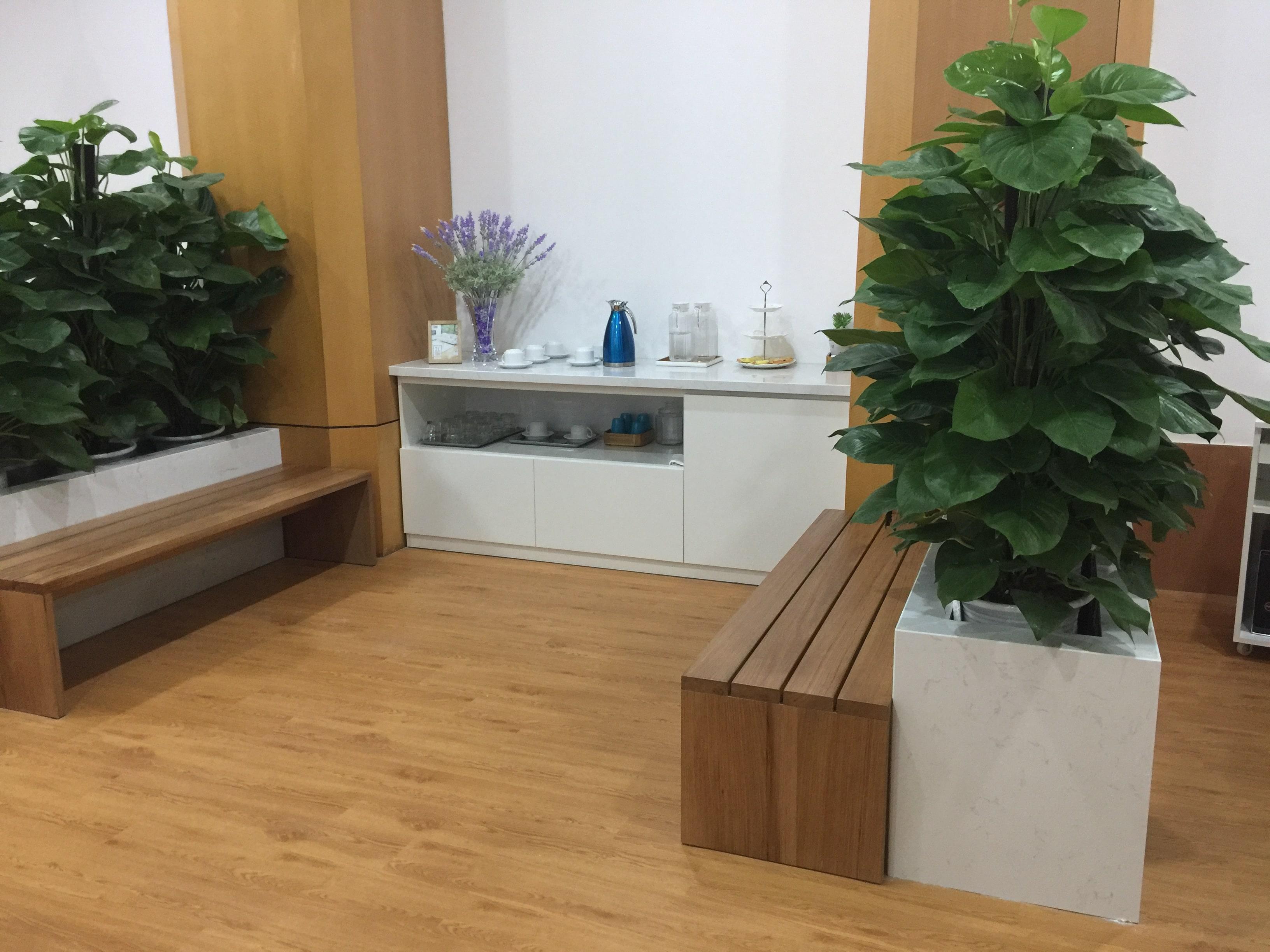 Công trình sàn nhựa | Phòng khám nha khoa 8