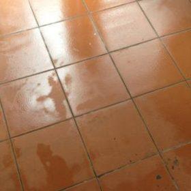 Sàn nhà nồm ẩm