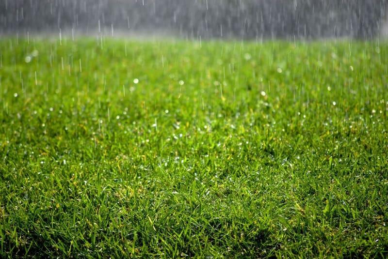Ưu điểm cỏ nhân tạo